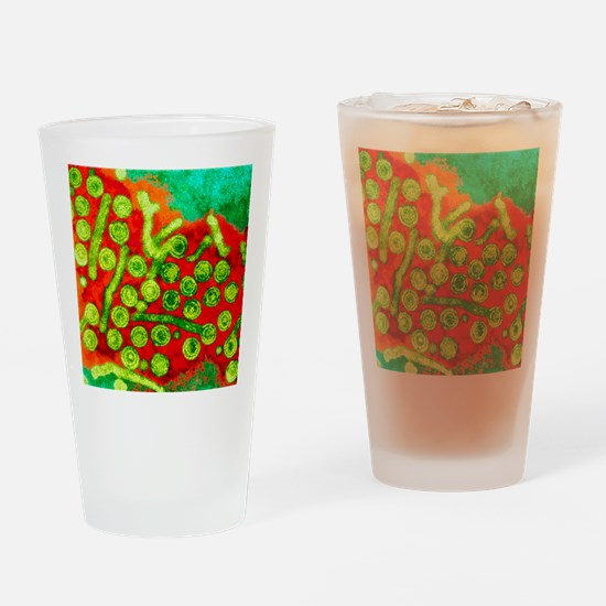 Hepatitis B viruses, TEM Drinking Glass