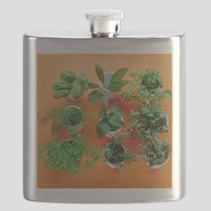 Herbs Flask