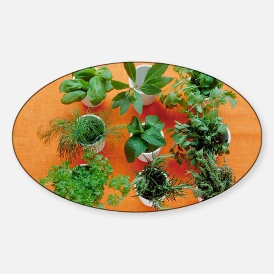 Herbs Sticker (Oval)