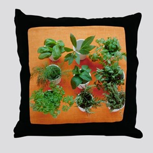 Herbs Throw Pillow