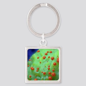 HIV particles exiting a cell Square Keychain