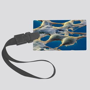 Human embryonic kidney cells, SE Large Luggage Tag