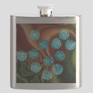 Human papilloma viruses, TEM Flask
