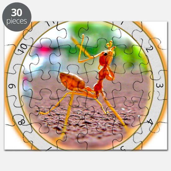 Red Ant Heads Up Puzzle