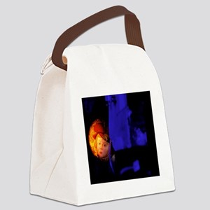 Infra-red scanning of a forged pa Canvas Lunch Bag
