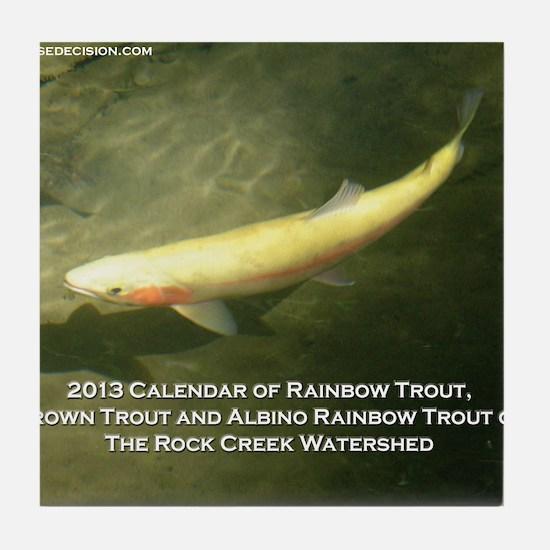2013 Calendar of Rainbow Trout, Brown Tile Coaster