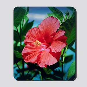 Caribbean flower Mousepad