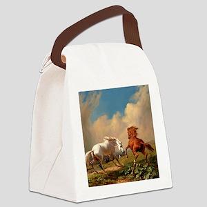 hbas_shower_curtain Canvas Lunch Bag