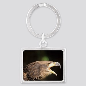 Young bald eagle Landscape Keychain