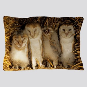 Young barn owls Pillow Case