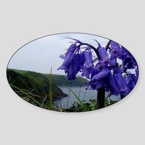Bluebells Sticker (Oval)