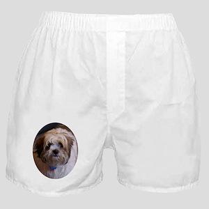 Loki Dog Boxer Shorts