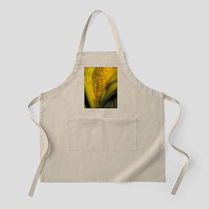 Maize Apron