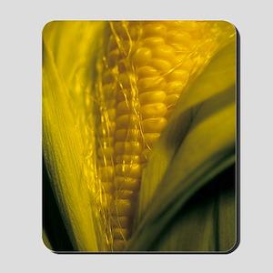 Maize Mousepad