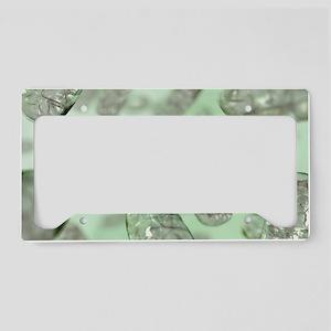 Mitochondria License Plate Holder