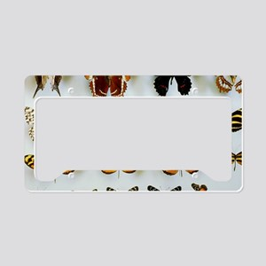 Mounted butterflies License Plate Holder