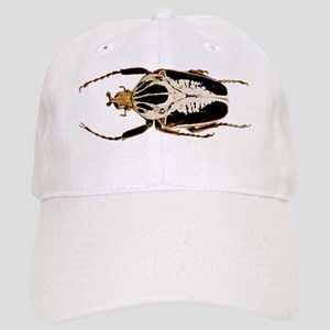 Mounted goliath beetle Cap