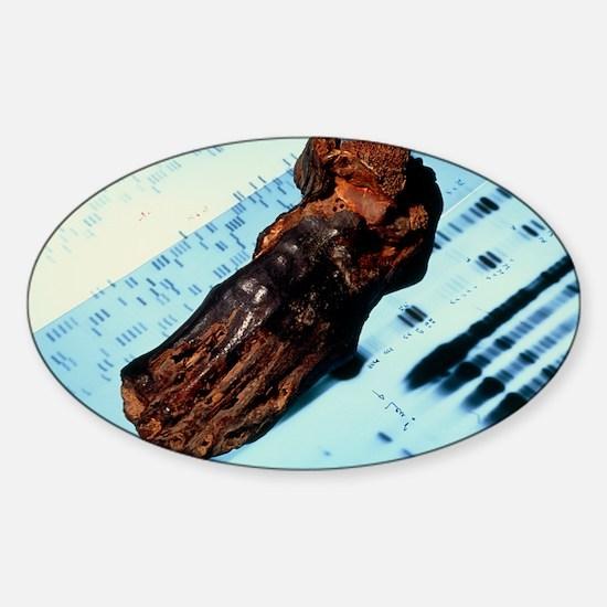 Mummified foot resting on DNA autor Sticker (Oval)