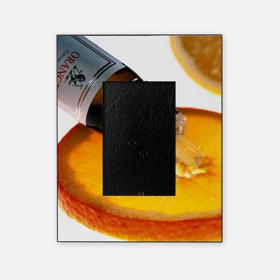 Orange slice and orange aromatherapy Picture Frame