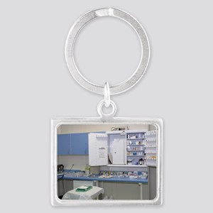 Operating theatre drugs cabinet Landscape Keychain