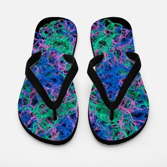 Norwalk virus particle Flip Flops