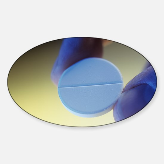 m6260244 Sticker (Oval)