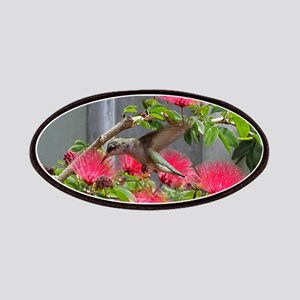 Hummingbird Patch