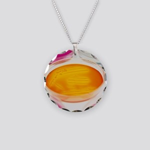 Petri dishes containing bact Necklace Circle Charm