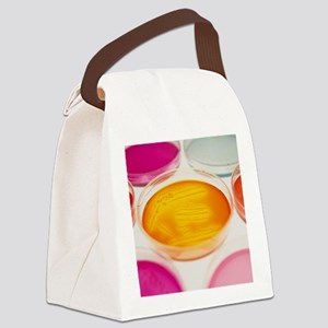 Petri dishes containing bacterial Canvas Lunch Bag