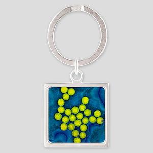 Polio viruses, TEM Square Keychain
