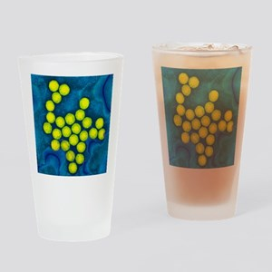 Polio viruses, TEM Drinking Glass