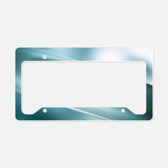 Positive pregnancy test License Plate Holder