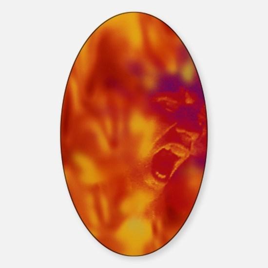 Pyromania Sticker (Oval)