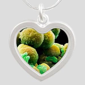 Prostate cancer cells, SEM Silver Heart Necklace