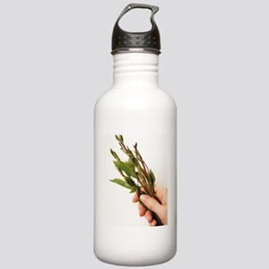 Qat leaves Stainless Water Bottle 1.0L