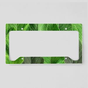 Sage leaves License Plate Holder