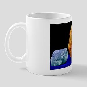 Salt grain and peppercorn, SEM Mug