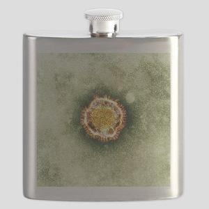 SARS virus, TEM Flask