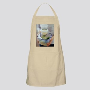Salad ingredients Apron
