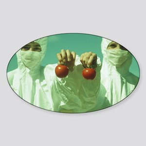 Scientists holding GM tomatoes Sticker (Oval)