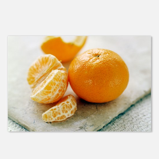 Satsuma Postcards (Package of 8)