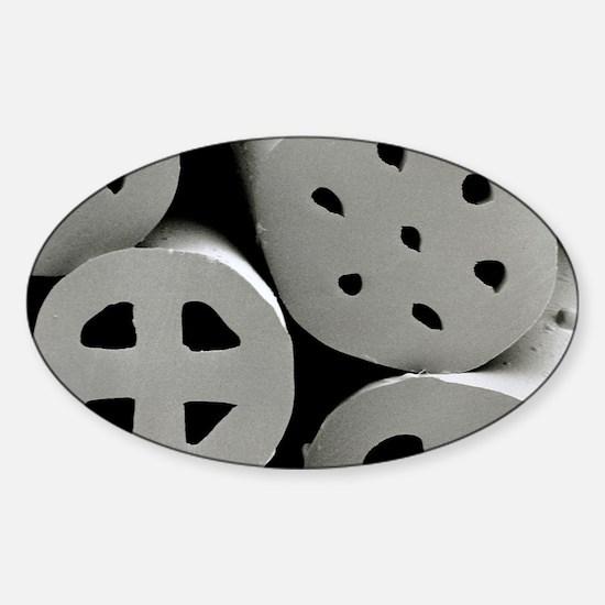 SEM of dacron polyester filling (Ho Sticker (Oval)