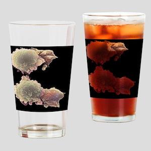Skin cancer cells, SEM Drinking Glass