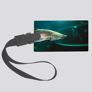 Shark in aquarium Large Luggage Tag