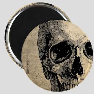 Vintage Skull Magnet