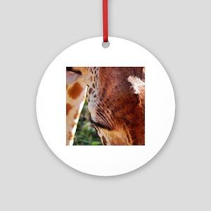 rothschild giraffe closeup kenya co Round Ornament