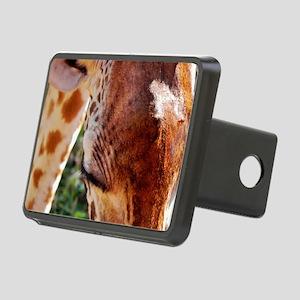 rothschild giraffe closeup Rectangular Hitch Cover