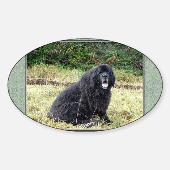 Alaska Newfoundeer Animal Antics Sticker (Oval)