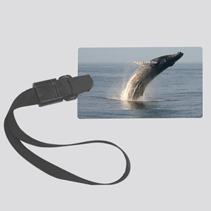 Humpback Whales Large Luggage Tag