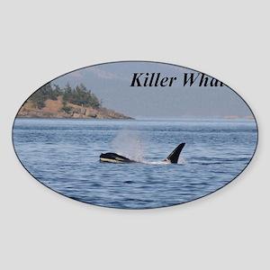 killer whales Sticker (Oval)